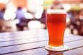 Pint of crafted ale on wooden table Royalty Free Stock Photo