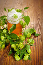 Pint and hop plant Stock Photography