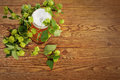 Pint and hop plant Royalty Free Stock Images
