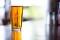Pint of India Pale Ale Royalty Free Stock Photo