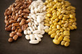 Pinto beans different Stock Photography