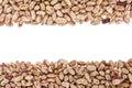 Pinto beans or mottled beans Stock Image