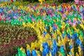Pinwheel in the garden Royalty Free Stock Photo