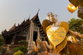 Pipal leafs gold leaf on the wishing bodhi tree in wat lok molee thailand Stock Photos