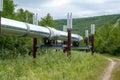 Pipeline in Alaska Royalty Free Stock Photo