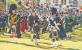 Pipers at nairn games drum and pipe band marching highland on th august Royalty Free Stock Images