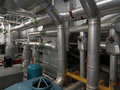 Pipework and plant in office room Royalty Free Stock Photos