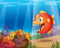 A piranha in the sea with corals illustration of Stock Photography
