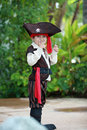 Pirate boy little dressed as Royalty Free Stock Photos