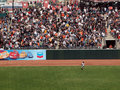 Pirate chases after a homerun ball in SF Royalty Free Stock Photos