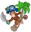 Pirate monkey with palm tree Royalty Free Stock Photo