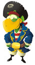 Pirate parrot Stock Photo