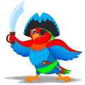 Pirate parrot colorful in costume with a knife and a gun Royalty Free Stock Photography