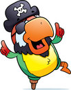 Pirate Parrot Dancing Royalty Free Stock Images