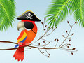 Pirate parrot illustration of on branches Stock Images