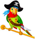 Pirate parrot illustration of cute Stock Photo