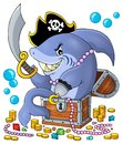 Pirate shark with treasure theme 1 Royalty Free Stock Photo