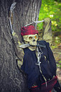 Pirate Skeleton Royalty Free Stock Photo