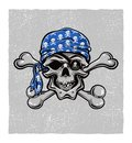 Pirate skull hand drawn vector eps skallywag Royalty Free Stock Image