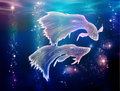 Pisces fishes fairy tale begins where life began is an astrological sign they are floating on the milky way in space Royalty Free Stock Photography