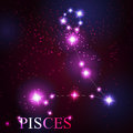 Pisces zodiac sign of the beautiful bright stars on background cosmic sky Royalty Free Stock Photography