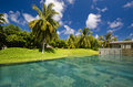 Piscine parmi le jardin tropical Images libres de droits