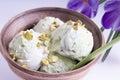 Pistachio ice cream in an earthenware bowl Royalty Free Stock Photo