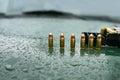Pistol Ammo On Hood
