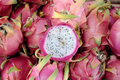 Pitaya fruit Stock Photography