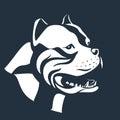 Pitbull dog sketch on black