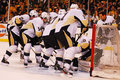Pittsburgh penguins Photo stock