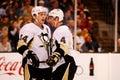 Pittsburgh penguins d orpik de ruisseaux Photo libre de droits