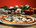 Pizza baked in wood oven Stock Photography