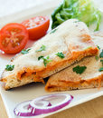 Pizza Calzone Stock Photography