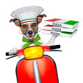 Pizza delivery dog with a stack of boxes on a motorbike Stock Photo