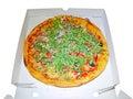 Pizza Four Seasons.