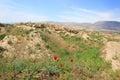 The place of Ancient Panjekent near modern Penjikent city, Tajikistan Royalty Free Stock Photo