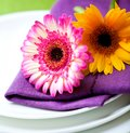 Place setting with gerbera flowers Stock Photos
