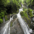 Place of a Thousand Drips Great Smoky Mountains National Park Royalty Free Stock Photo