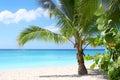 Plage et compartiment tropicaux Image stock