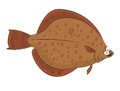Plaice vector image of funny cartoon smiling Stock Image