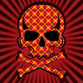 Plaid skull Royalty Free Stock Photo