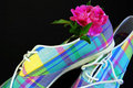 Plaid Tennis Shoes Royalty Free Stock Images