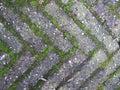 Plain brick flooring terrace Royalty Free Stock Photo