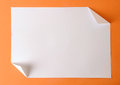 Plain paper Royalty Free Stock Photo