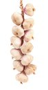 Plait of garlics isolated on a white background Royalty Free Stock Images