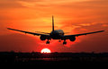 Plane landing in sunrise Royalty Free Stock Photo
