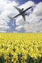 Plane takeoff Royalty Free Stock Photo