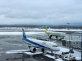 Planes landing at getting ready at Chitose airport on a snowy day Sapporo Royalty Free Stock Photo