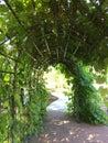 Plant archway
